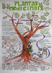 O poder do mundo vegetal: convergências entre saúde e agroecologia